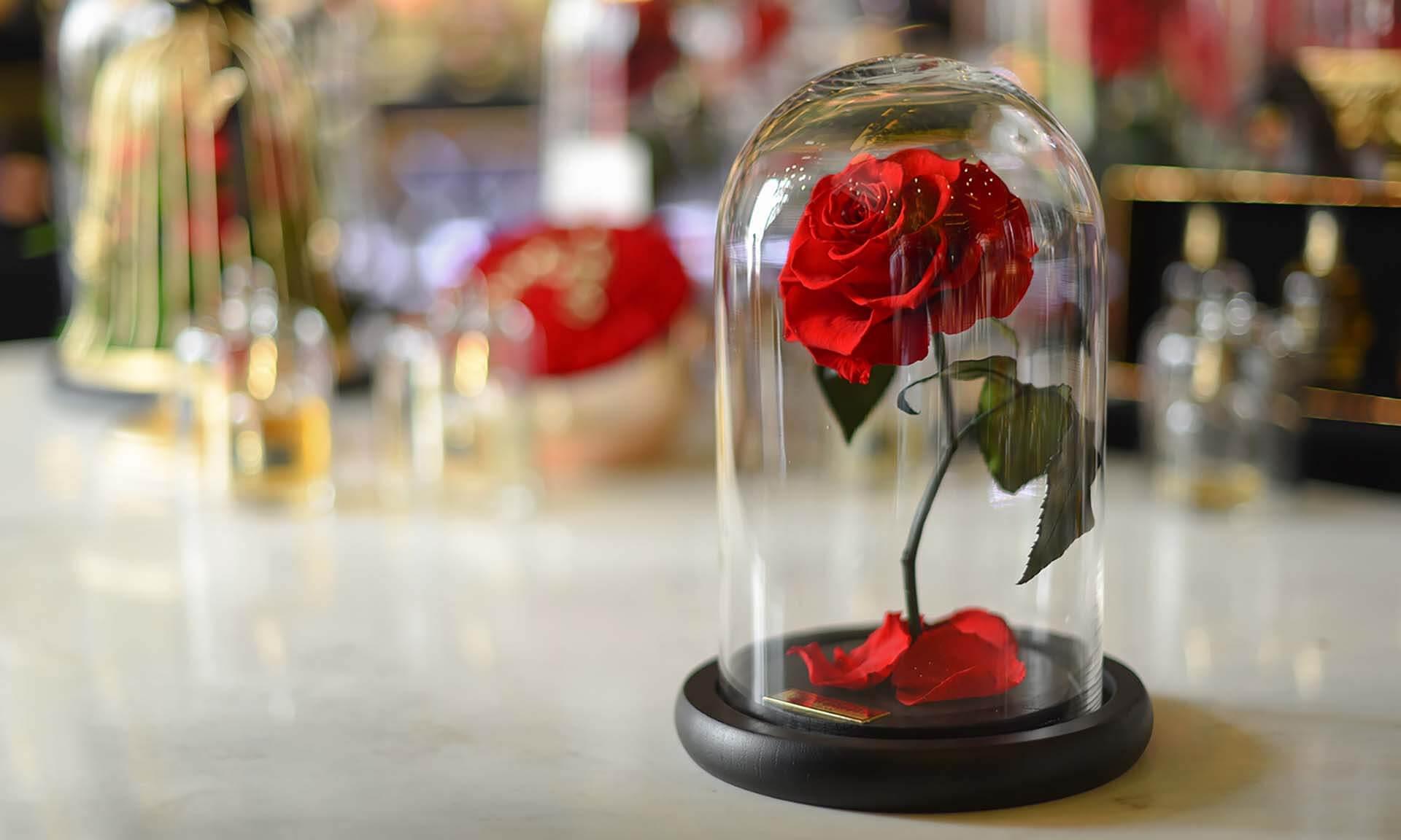 رز جاودان یک باکس گل رز کوچک و دوست داشتنی